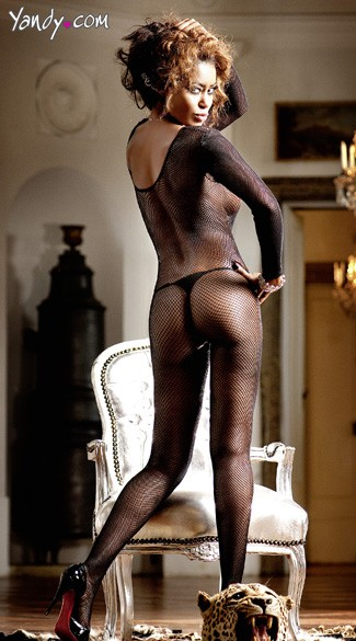 Long Sleeve Mesh Bodystocking