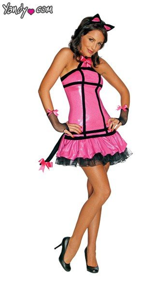 Pretty Kitty Costume, Sexy Kitty Costume, Adult Kitty Costume, Pretty Kitty Halloween Costume