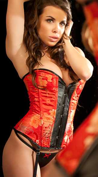 Leather and Red Brocade Corset