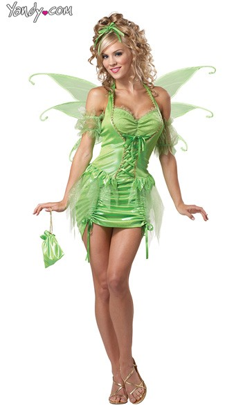 Tinkerbell Fairy Costume, Tinkerbell Costume, Fairy Wings Costume