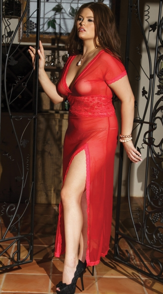 Plus Size Mesh and Lace V Neck Gown
