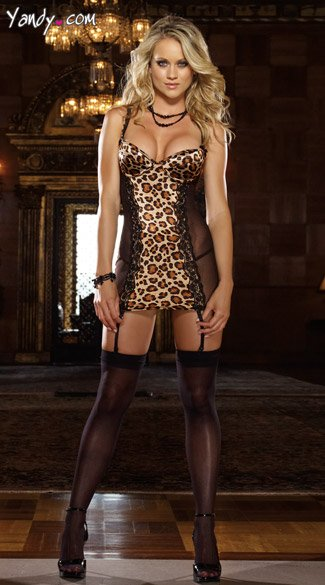Cheetah Print Garter Chemise And Thong