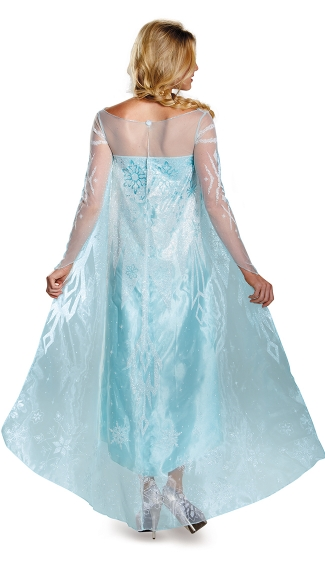 Adult Elsa Frozen Costume