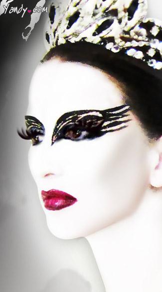 Aninimal Book: Black Swan Eye Kit, Black Swan Glitter Make Up, Black Swan ...
