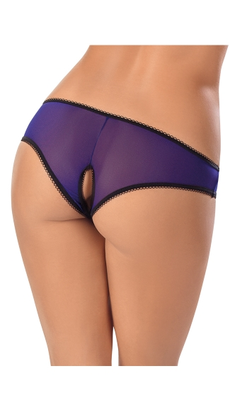 Mesh Panty with Keyhole Open Crotch