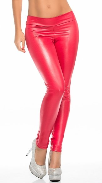 Shiny Opaque Leggings