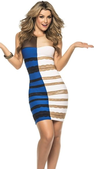 """What Is The Color?\"" Dress Costume"