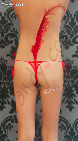 Nylon Thong With Feather Plume, Panty with Feather Back, Tickle Feather Thong
