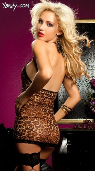 Hear Me Roar Chemise And Thong