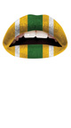 Green and Gold Fantasy Football Dress Costume, Super Bowl Dress, Football Clothes for Women