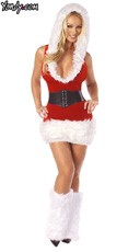 Santa's Model Costume