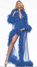 Deluxe Blue Feather Robe