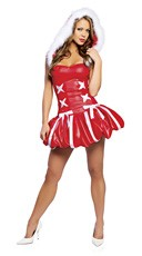 Santa's Princess Costume