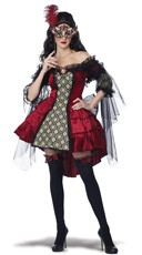 Plus Size Mysterious Masquerade Costume