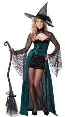 Evening Enchantress Costume