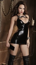 Faux Vinyl Chemise and Paddle