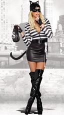 Sexy Cat Burglar Costume