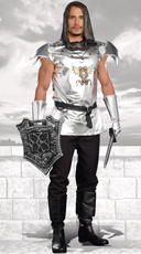 Men's Shining Knight Costume
