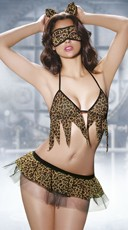 Kitty Cat Lingerie Costume