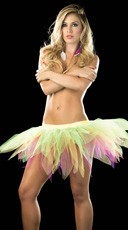 Multicolored Fairy Tutu