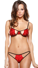 Red Stretch Lace Bra Set