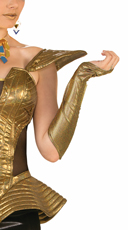 Futuristic Gold Arm Sleeves