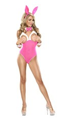 Plus Size House Bunny Lingerie Costume