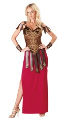 Gorgeous Gladiator Costume