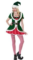 Deluxe Holiday Honey Costume