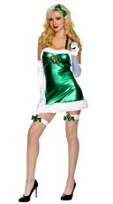 Ms  Elf Costume