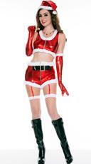 Hot Santa Babe Costume