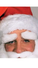 Mohair Santa Eyebrows
