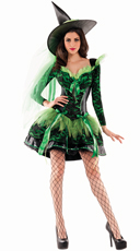 Wicked Emerald Witch Shaper Costume