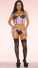 Plus Size Pretty in Pink Bustier and Garter Panty
