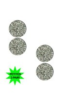 Small Silver Glitter Circle Pasties