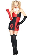Super Villain Harley Quinn Costume