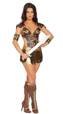 Fantasy Warrior Girl Costume