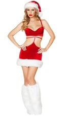 Santa's Beauty Costume