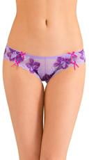 Purple Cinch You Asked Bikini Panty