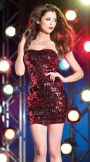 Dazzle Sequin Tube Dress