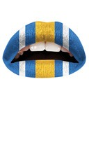 Blue, Yellow and White Lip Kit