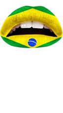 Green and Yellow Brazil Lip Kit