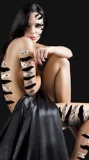 Zebra Body Art Kit