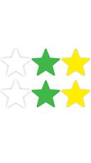 Neon Star Pasties