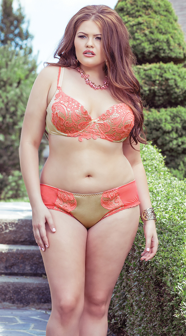 Plus Size Lace and Scalloped Trim Bra and Panty Set, Plus Size ...