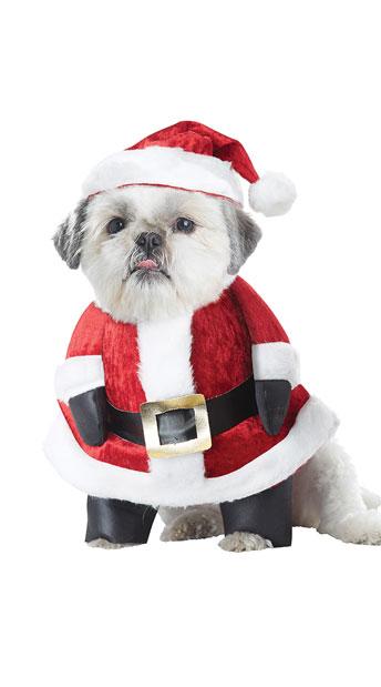 Santa Paws Dog Costume - Red/White