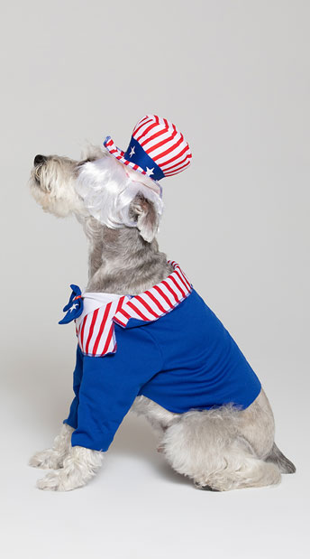 Uncle Sam Dog Costume - Red/Blue/White