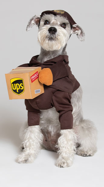 UPS Pal Dog Costume - Brown