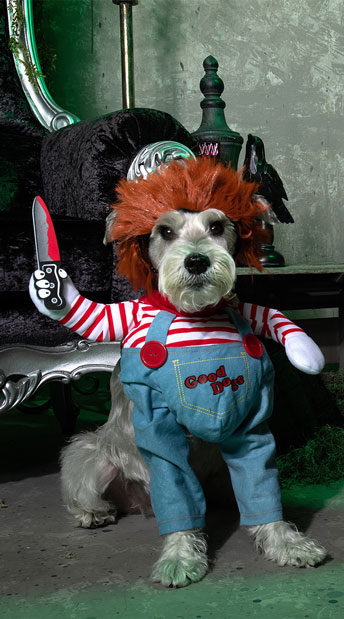 Deadly Doll Dog Costume - Blue/Red