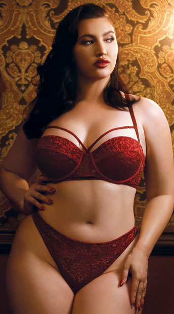 plus size gwen wine bra set plus size red lace bra set. Black Bedroom Furniture Sets. Home Design Ideas